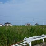 名取市閖上(ゆりあげ)中学校北東側風景